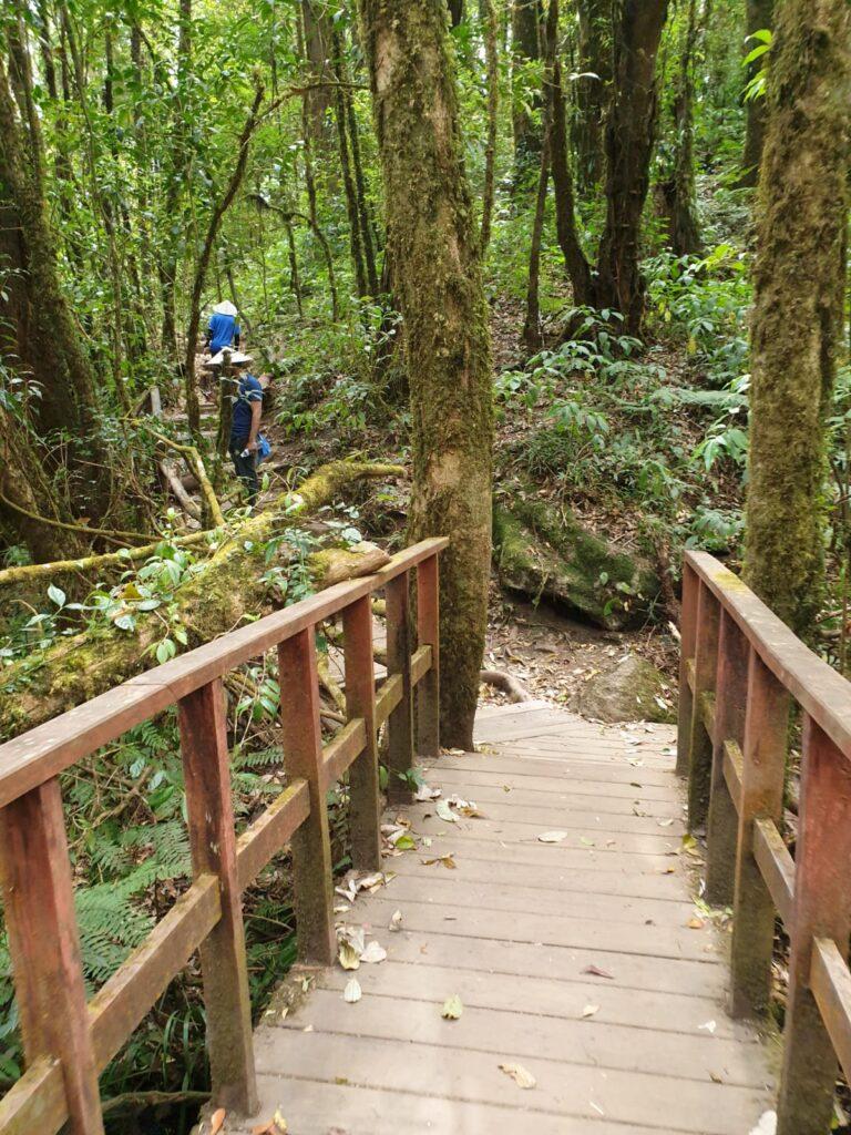 Hiking_at_doi_inthanon_temple_park