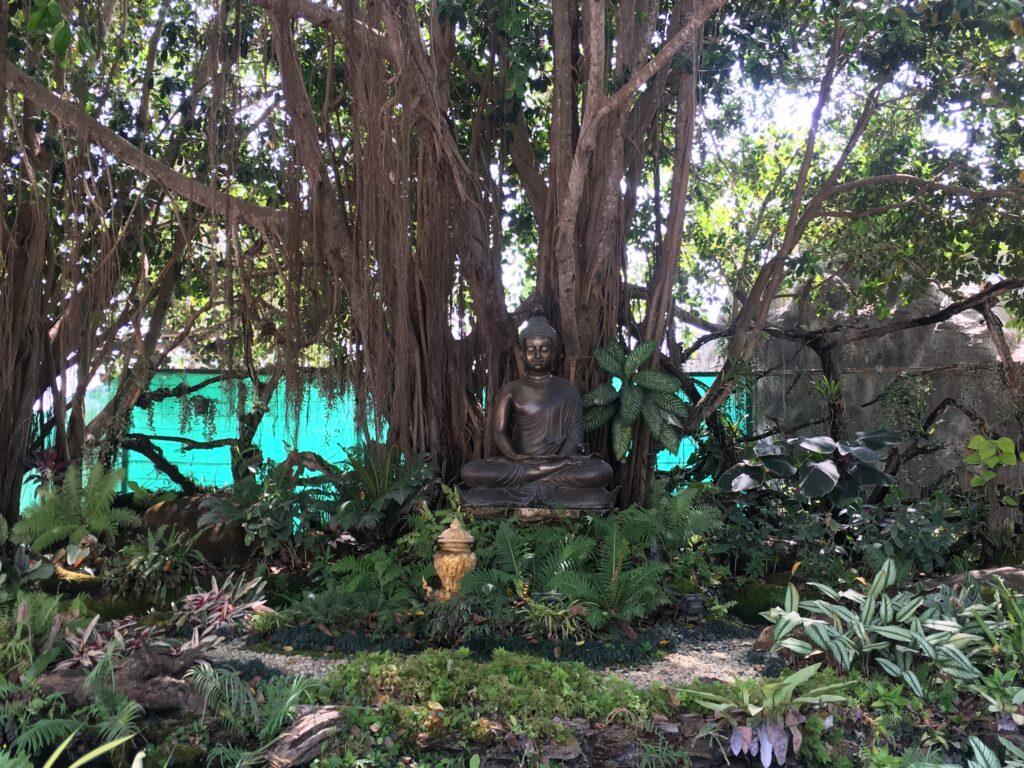 buddha-statue-at-white-temple