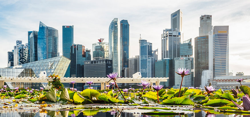 Summer_in_singapore