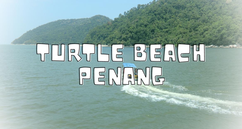 turtle_beach_penang