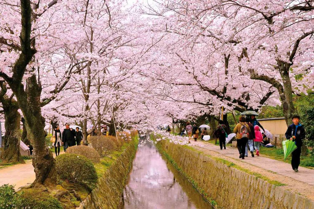 The-right-time-to-visit-tokyo